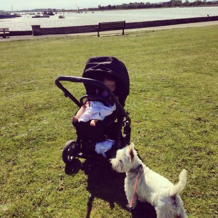 Monday- Dog walk